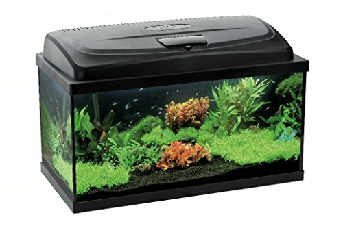 aquael aquarium set leddy led 100 200 liter komplett aquarium mit moderner led technik ii ii. Black Bedroom Furniture Sets. Home Design Ideas