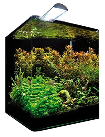 Dennerle  5906 NanoCube Complete+ 30 Liter -