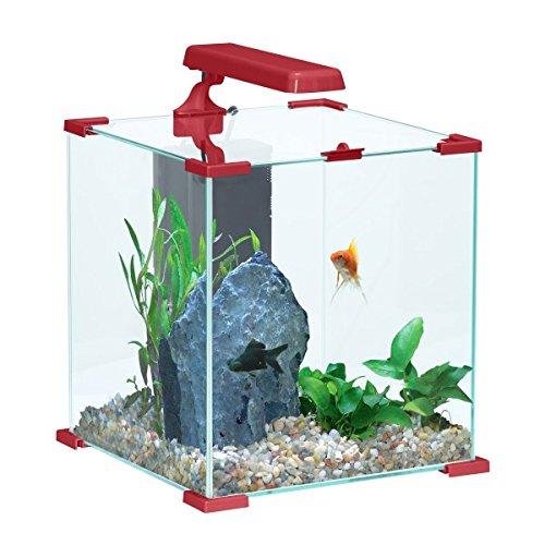 nanolife komplettes aquarium roter w rfel zolux 50 liter ii ii 2017 aquariumfilter test. Black Bedroom Furniture Sets. Home Design Ideas