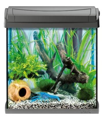 tetra aquaart discovery line aquarium komplett set 30 liter anthrazit inklusive tetra. Black Bedroom Furniture Sets. Home Design Ideas