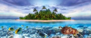 Tetra Repto Aqua Set, Komplettset (für Wasserschildkröten mit Innenfilter, Heizer, LED-Beleuchtung und Deko-Insel mit integriertem Futterplatz, ideal zur Aufzucht von Baby- und jungen Schildkröten) -