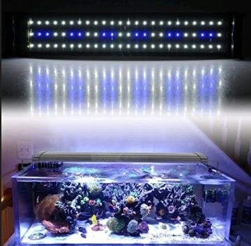 Aquarium SMD LED Lampe Aufsetzleuchte 72 LED 11 W 50 - 68 cm erweiterbar, Blau/Weiß Lichtfarbe einstellbar -